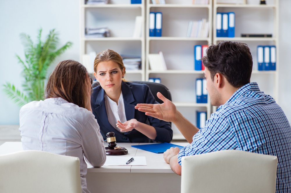 Emotions, Schedules and Visitation in Family Law