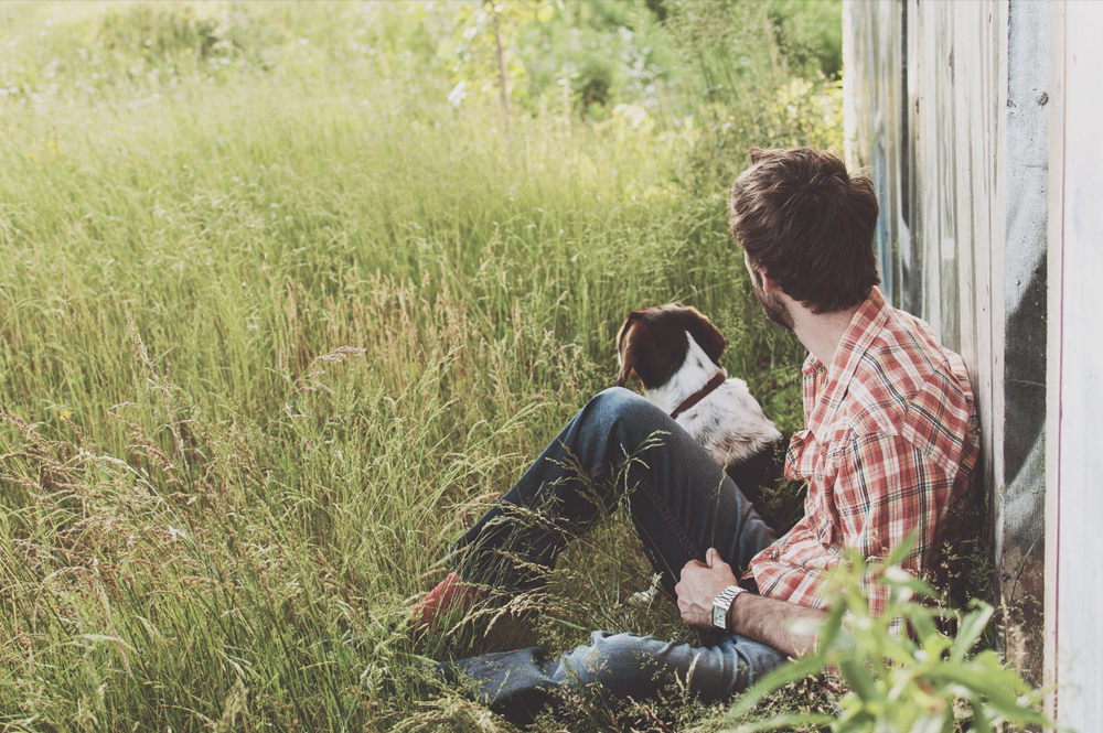 When A Couple Divorce, Who Gets Custody Of The Dog?